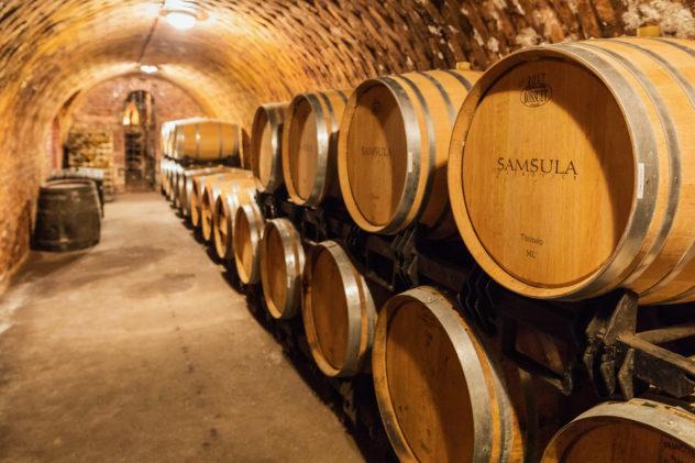 Vinařství Šamšula - sklep